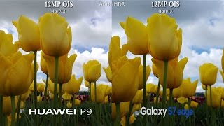 Huawei P9 vs Samsung Galaxy S7 Edge - Camera Test Comparison Review! width=