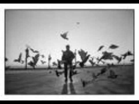 De Los Malos de El Bicho Letra y Video