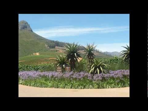 Delaire Graff & Zevenwacht Wine Estate Pics (Stellenbosh, South Africa)