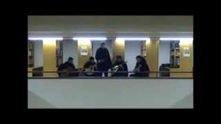 Grupo de Fados e Guitarradas da Faculdade de Ciências - Menino D'Oiro (José Afonso)