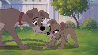 Lilli e il vagabondo 2 - Il cucciolo ribelle - Spezzone 1