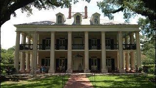New Orleans Cajun Swamp and Plantation Tour