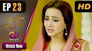 Drama | Is Chand Pe Dagh Nahin - Episode 23 | Aplus ᴴᴰ Dramas | Zarnish Khan, Firdous Jamal width=