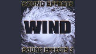 rain, wind, relaxing, gentle sound effects wet