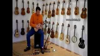 Express Yourself - Loop Recording with RISA-Acoustic-Ukulele