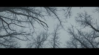 D-Pulse - Anna  (Official Music Video)