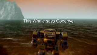 Into the Sun - A Whale's Goodbye