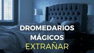 Dromedarios Mágicos - Extrañar (Video Oficial)
