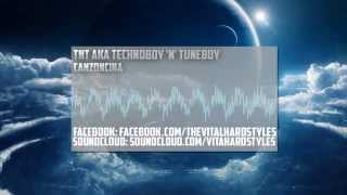 TNT aka Technoboy 'N' Tuneboy - Canzoncina (HQ/HD Optimized Rip)