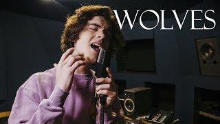 Selena Gomez, Marshmello - Wolves (Cover by Alexander Stewart)