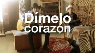 Los Vendavales de Adán Meléndez - Cortinas Guindas (Lyric Video)