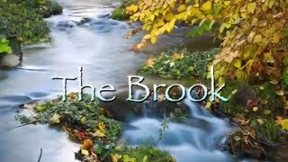 THE BROOK, gentle, lilting, original piano music, relaxing, romantic, ambient