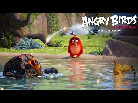 ANGRY BIRDS LA PELÍCULA. Una aventura llena de sorpresas. En cines 13 de mayo