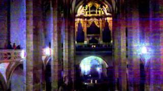 Silbermann-Orgel-Chor Konzert im Dom zu FG (Orgel)