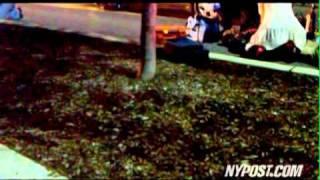 Danroy Henry Shooting Death - New York Post
