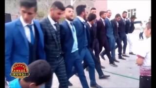 Şexaniya Sofi Ömer Tey Tey