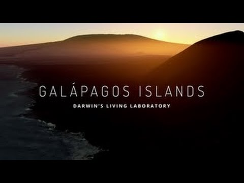 Destinos In Galapagos Islands