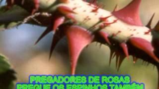 PREGADORES DE ROSAS  LEGENDADO