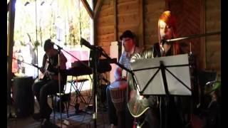 Trio- Moja i Twoja nadzieja (acoustic cover)
