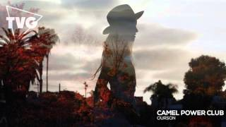 Camel Power Club - Ourson