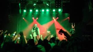 Paluch - Wracam Do Domu LIVE HD Kraków 28,02,2014