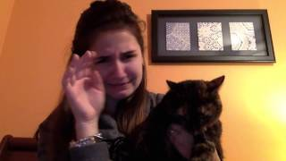I Love Cats ft. Little B