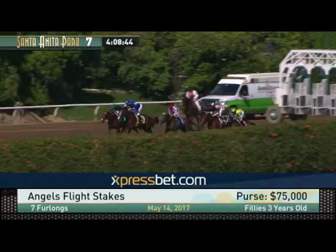Angels Flight Stakes - May 14, 2017