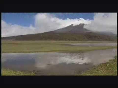 ECUADOR TRAVEL: THE FOUR WORLD'S: GALAPAGOS, AMAZON, SIERRA, COSTA