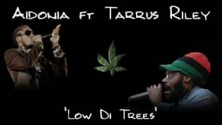 Aidonia ft Tarrus Riley - Low Di Trees