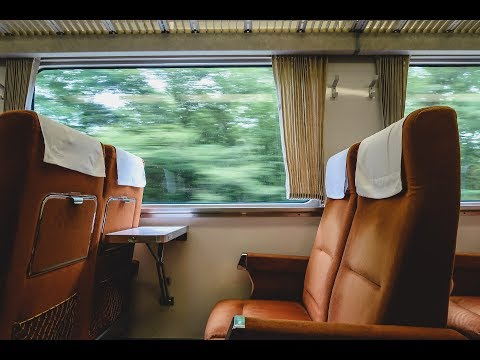 Tokyo to Nikko Train Ride | First Impressions of Nikko, Japan