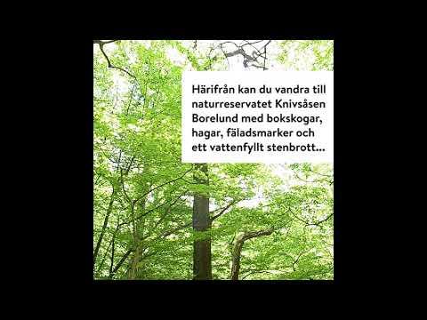 Besök naturen i  Kaninlandet och Knivsåsen