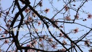 rudecute - built for us (with lyrics)