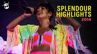 triple j's Splendour In The Grass Highlights 2014 (Peking Duk - 'High' live)