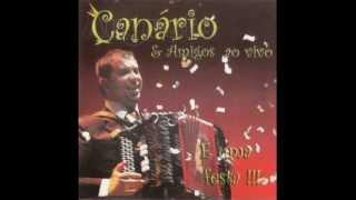 """""""A minha terra e a tua terra"""" Augusto Canario e Amigos"""