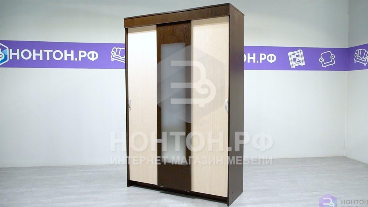 Шкаф-купе Бася белый древесный