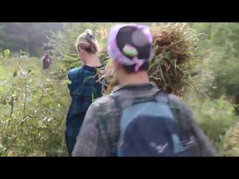 Wilderness Immersion Program