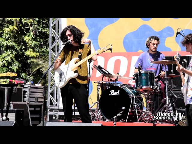 Video en directo de Poolshake en WAM 2017.