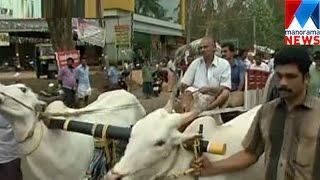 Protest to restart Kakoor Ox race  | Manorama News