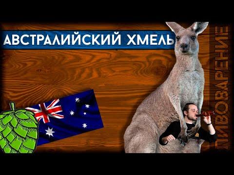 Хмельная география: АВСТРАЛИЯ | Перечень австралийских пивоваренных дрожжей