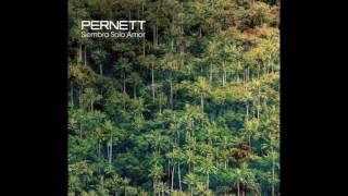 5.  Pernett - Lucerito de la Noche feat. Roldan