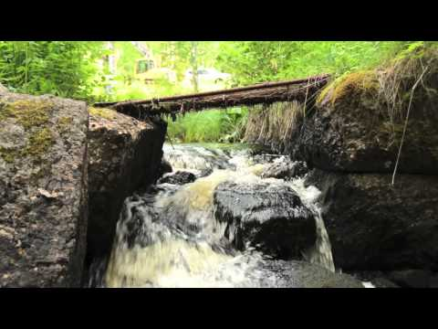 Dam removal ReMiBar (english subtitles)