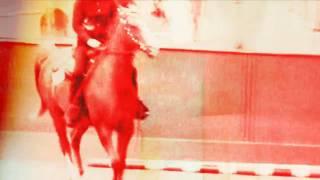 Horses - Run & Hide