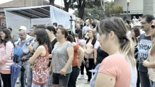 Zé Marques - Ritmo de Verão
