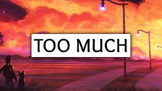 ZAYN ‒ Too Much (Lyrics) ft. Timbaland