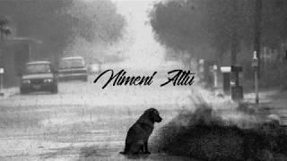 Nimeni Altu - Pentru tine'  Lyrics [HD]