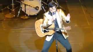 "ultimate tribute to : elvis performing ""shake, rattle & roll"""
