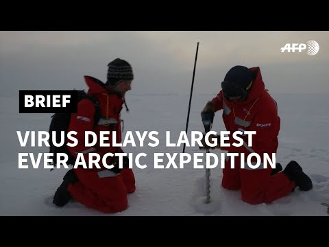 Virus delays largest Arctic expedition in history | AFP