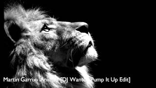 Martin Garrix   Animals [DJ Wantoz Pump It Up Edit]