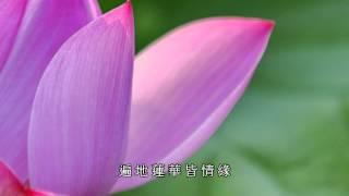愛蓮 ( Like Lotus Flower )