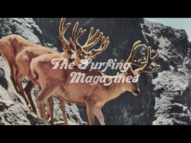 """Canción """"New Day"""" de The Surfing Magazines."""
